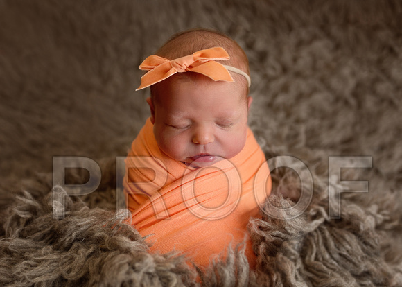 Newborn Photographer Wichita, KS Jasmin Rupp Photography
